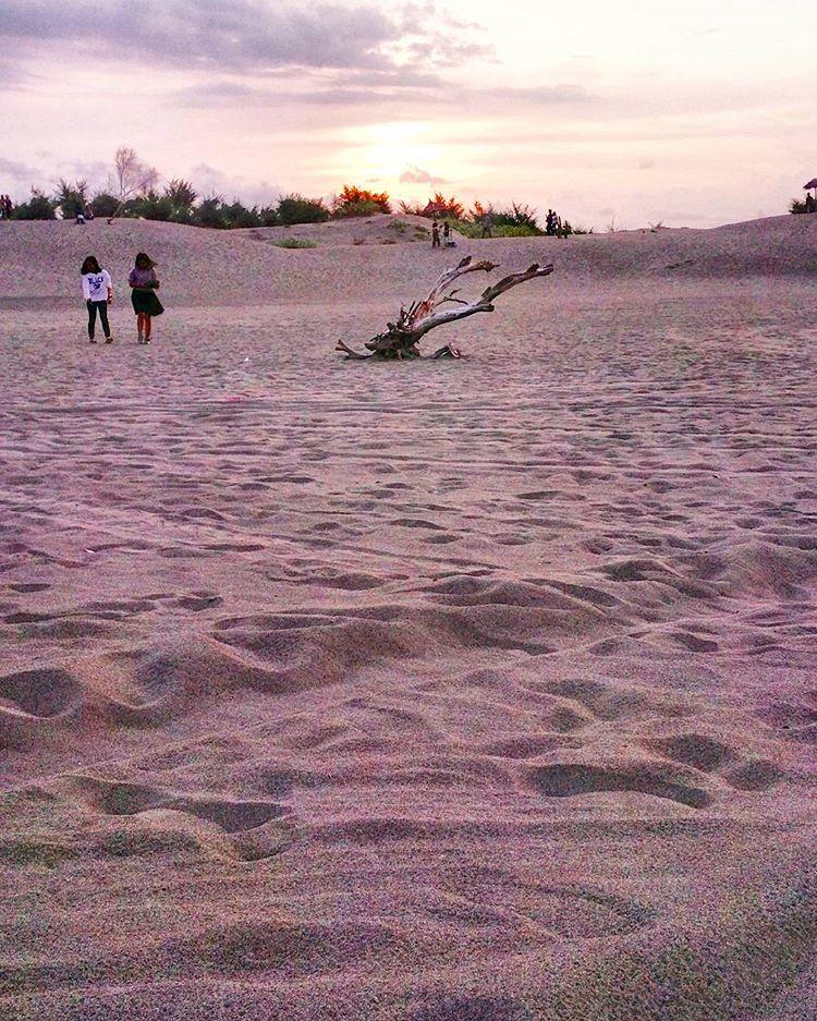 gumuk pasir parangtritis4
