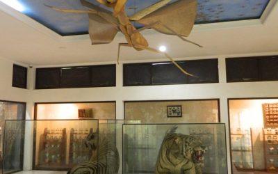 Museum Gembira Loka